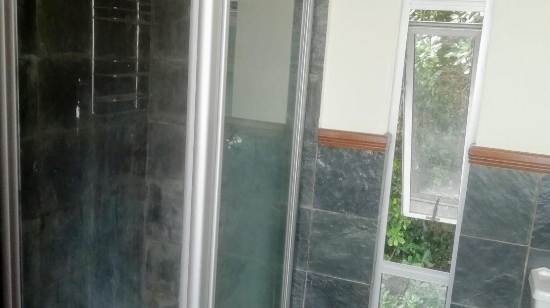 Dahlia Street House Bathroom Shower
