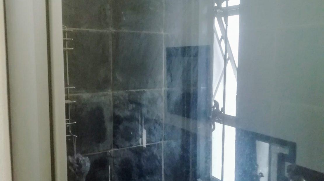 Dahlia Street House For Sale Shower