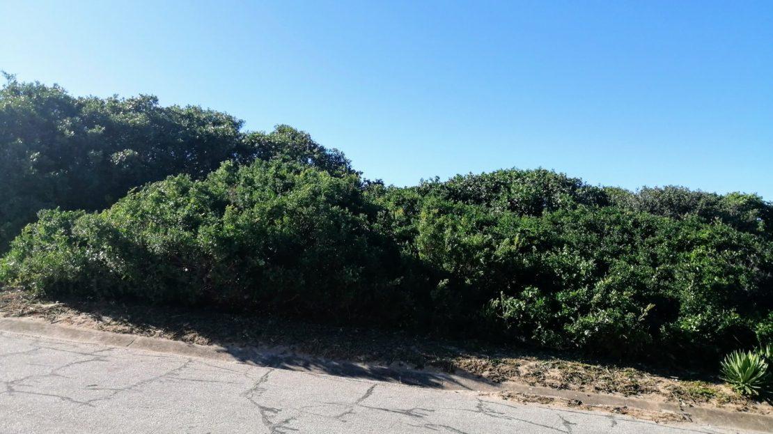 BHB Corner Plot For Sale Hyacinth Road