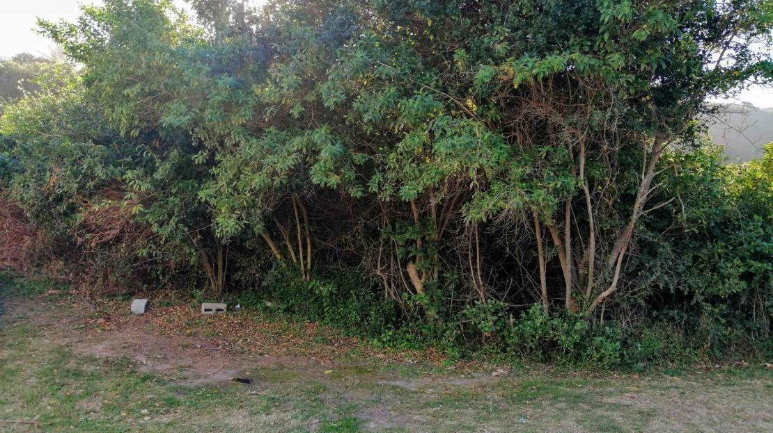 Commercial Plot For Sale In Blue Horizon Bay