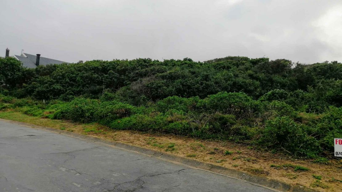 Hyacinth Road Plot For Sale View From Street